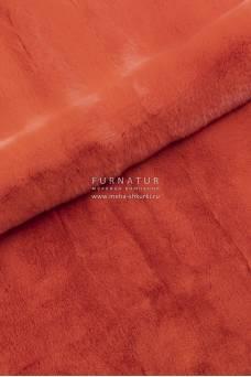 Пластина кролик рекс, оранжевый